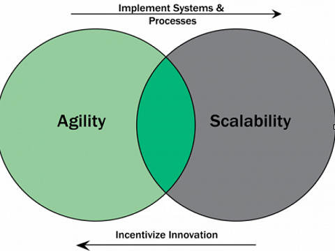 Agile businesses are looking to scale by standardization while established businesses are looking to become more agile by incentivizing innovation.
