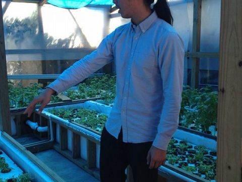 Co-founder Daniel Nguyen gives a tour of VEGGI's greenhouse in New Orleans East.